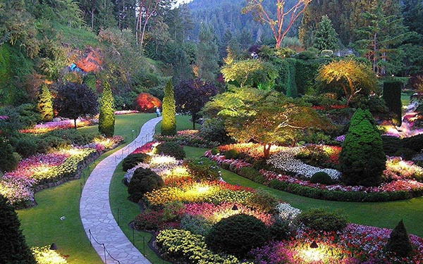 butchart garden at night