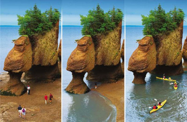 fundy sealevel
