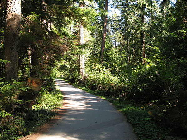 stanley park hiking